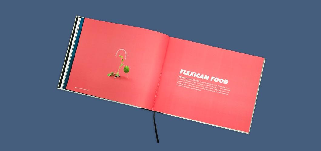 Flexican Food